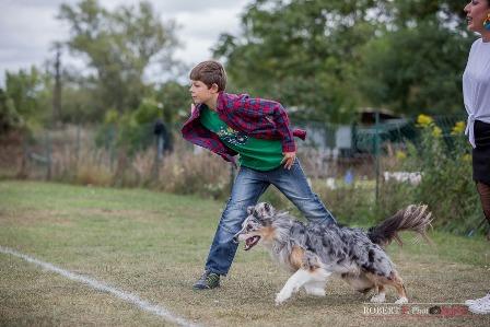 angel dogfrisbee agm 2016 (14)